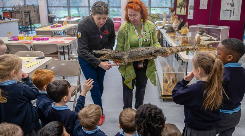 Two Learning officers show a group of school children a stuffed aligator