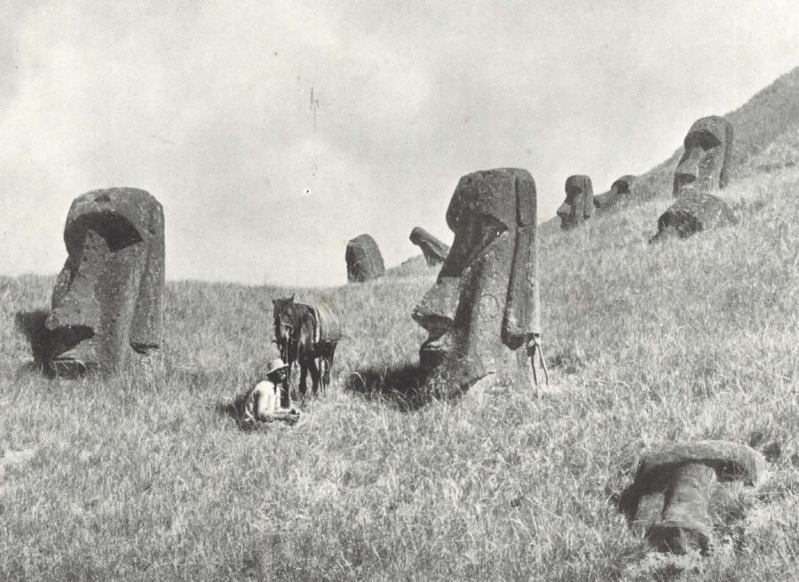Photograph possibly take by Katherine Routledge of the Moai statues on a hill side. Their huge heads are the only thing above the ground. A boy sits next to his horse and one of the moai heads for scale.