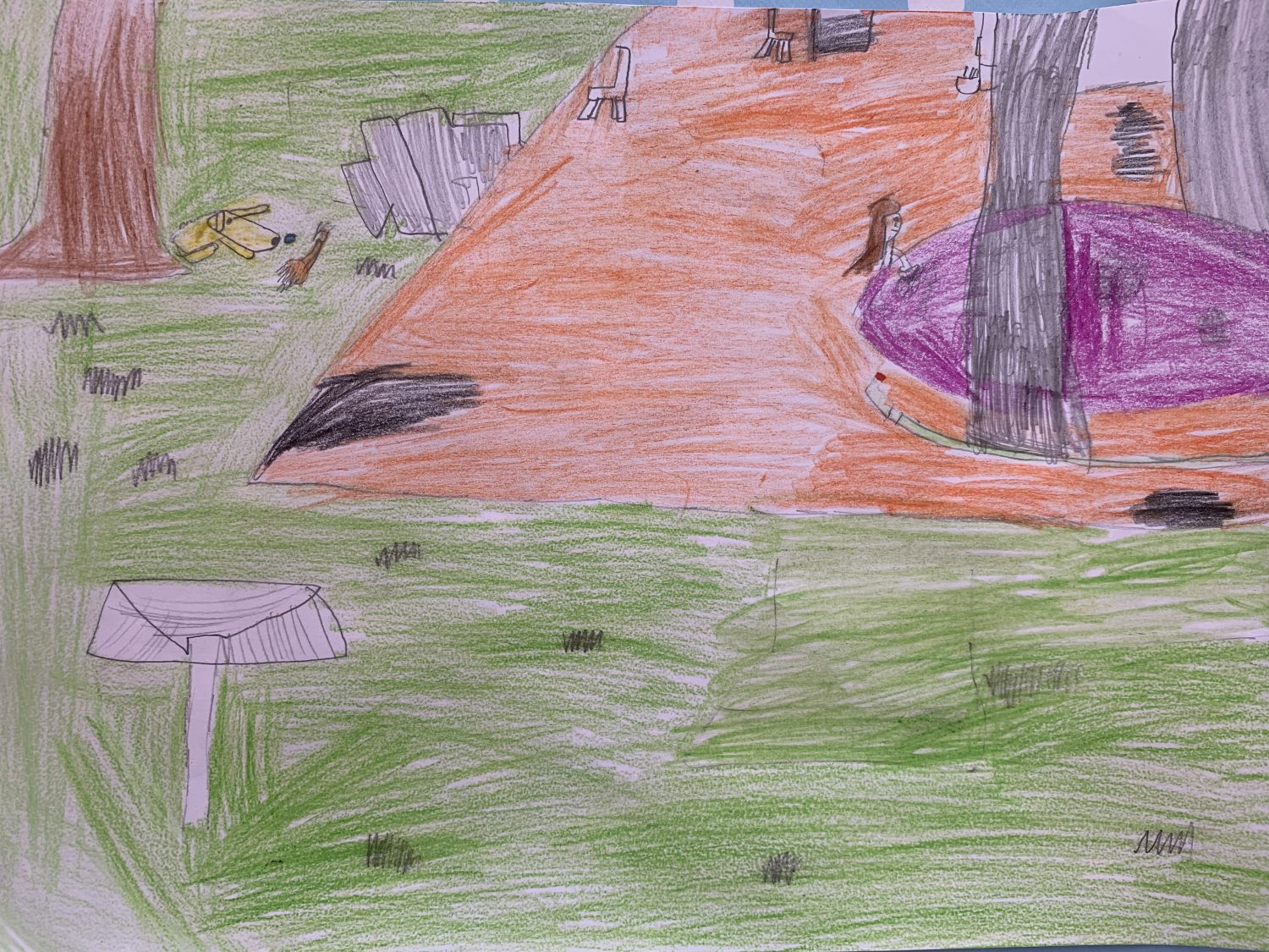 children's drawing In this picture I am cleaning out my dog Sally's pool because it had got a bit gunky. It is now clean as new. She now loves to lay down and cool off in it.